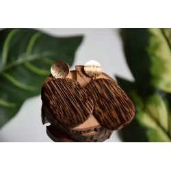 Exotic hanging earrings