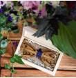 Drewniane pudełko na spinki do mankietów